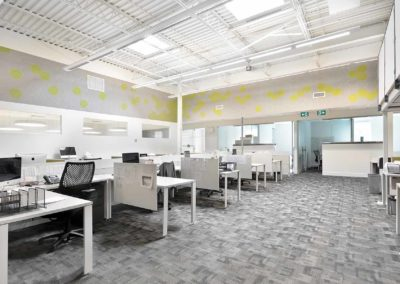 Office Renovation – Toronto Research Chemicals